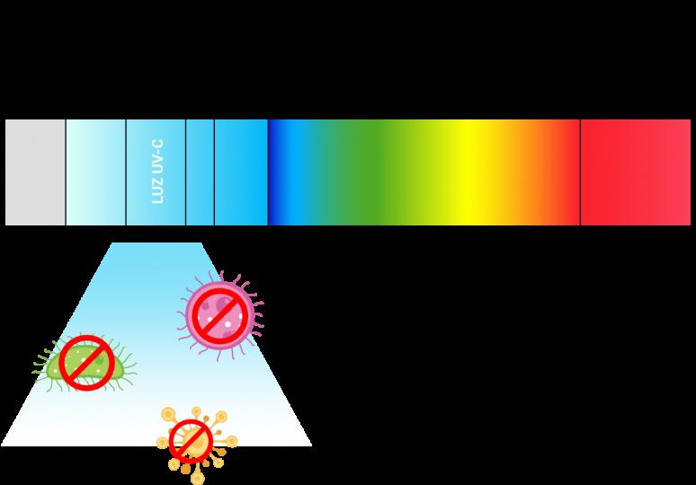 HAMBIRE - LUZ UV