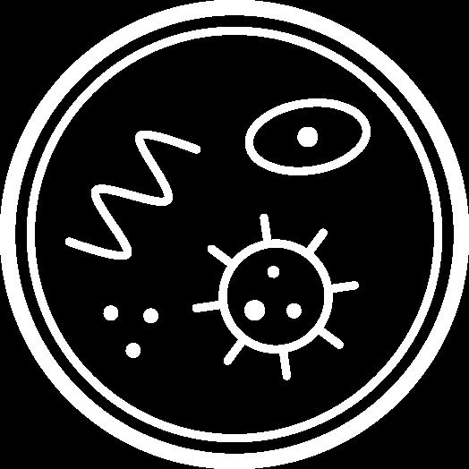 HYBOXUV - Luz ultravioleta UV-C
